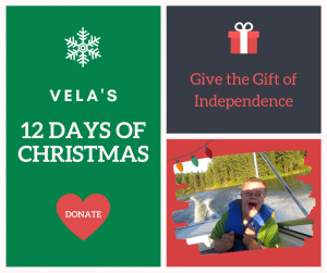 Vela's Christmas Campaign Image